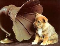 Minute Waltz Op 64 1 Dog Waltz